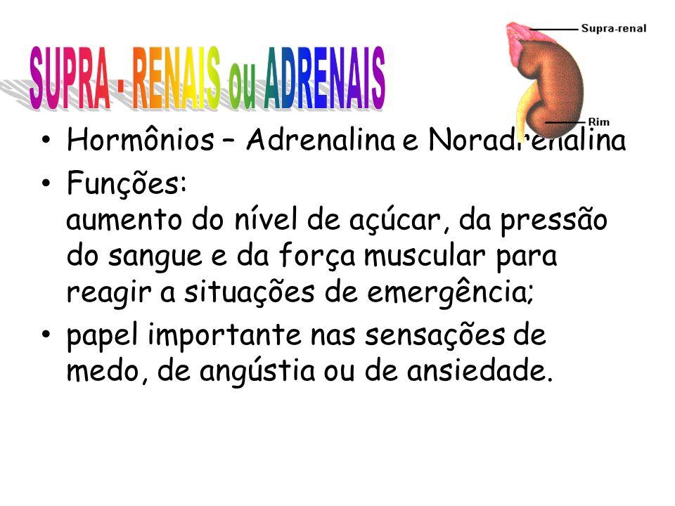 Hormônios – Adrenalina e Noradrenalina Funções: aumento do nível de açúcar, da pressão do sangue e da força muscular para reagir a situações de emergência; papel importante nas sensações de medo, de angústia ou de ansiedade.
