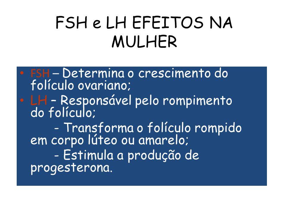 FSH e LH EFEITOS NA MULHER FSH – Determina o crescimento do folículo ovariano; LH – Responsável pelo rompimento do folículo; - Transforma o folículo rompido em corpo lúteo ou amarelo; - Estimula a produção de progesterona.