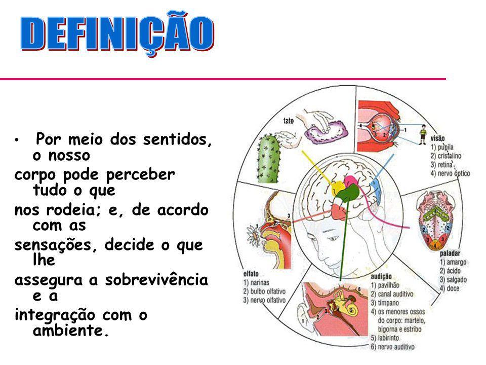 Miopia- IMAGEM SE FORMAM ANTES DA RETINA.Hipermetropia – IMAGEM SE FORMA ATRÁS DA RETINA.