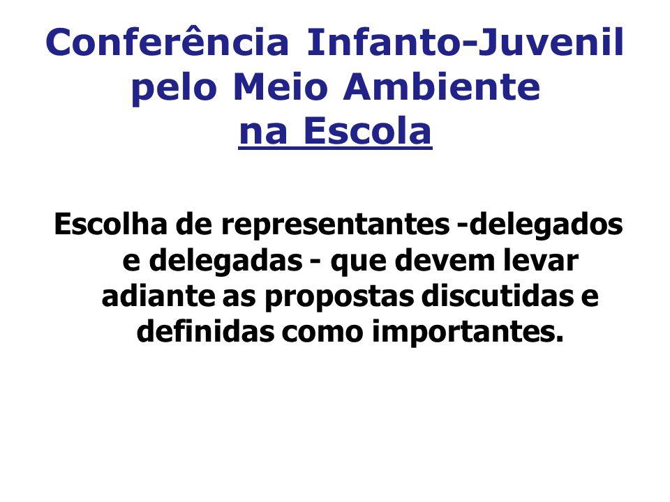 Conferência Infanto-Juvenil pelo Meio Ambiente na Escola Escolha de representantes -delegados e delegadas - que devem levar adiante as propostas discu
