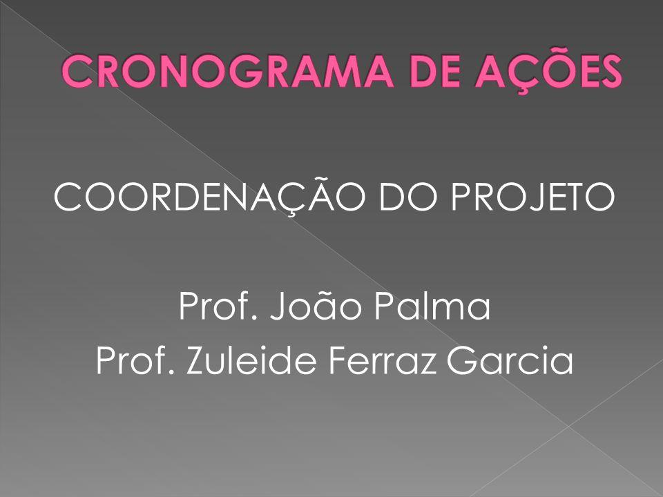 COORDENAÇÃO DO PROJETO Prof. João Palma Prof. Zuleide Ferraz Garcia