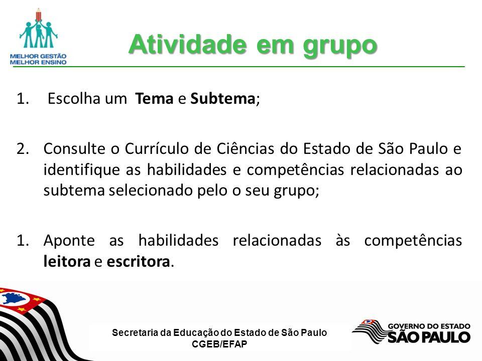 Secretaria da Educação do Estado de São Paulo CGEB/EFAP 1.