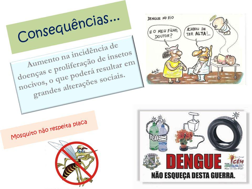Consequências... Aumento na incidência de doenças e proliferação de insetos nocivos, o que poderá resultar em grandes alterações sociais. Mosquito não