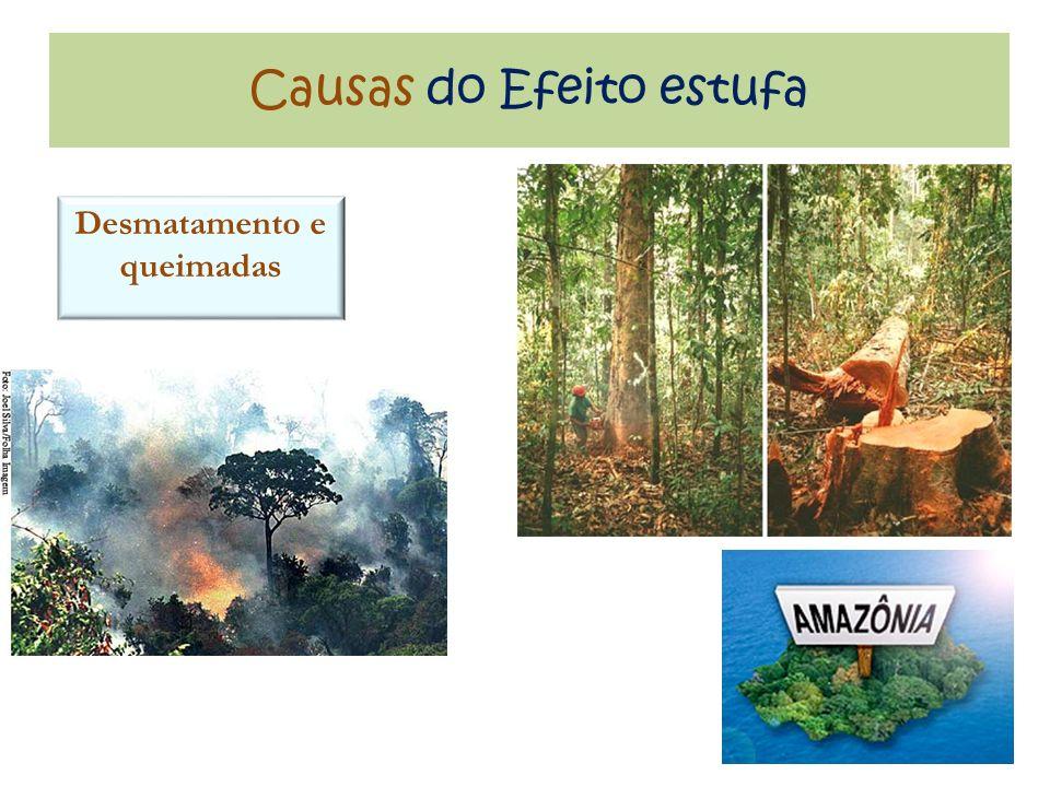 Causas do Efeito estufa Desmatamento e queimadas