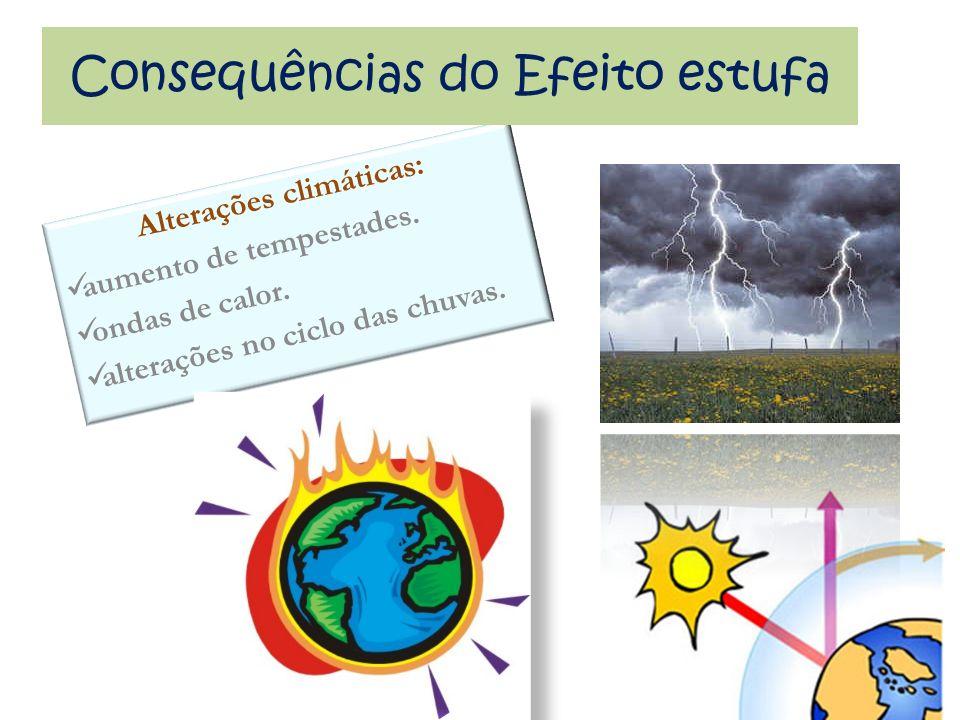 Alterações climáticas: aumento de tempestades. ondas de calor. alterações no ciclo das chuvas. Consequências do Efeito estufa