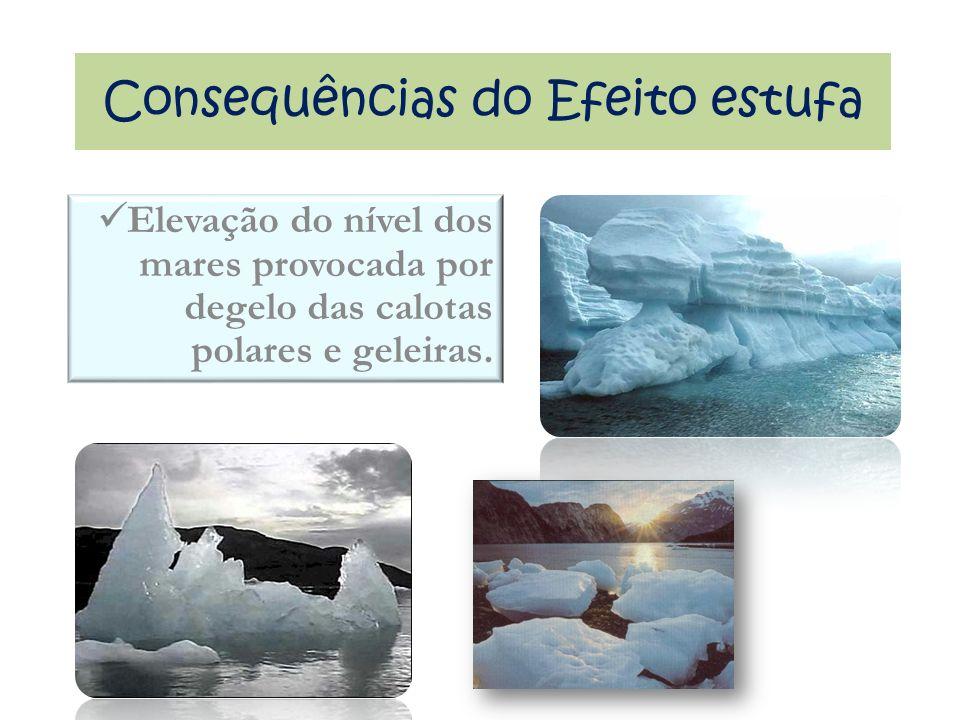 Elevação do nível dos mares provocada por degelo das calotas polares e geleiras.