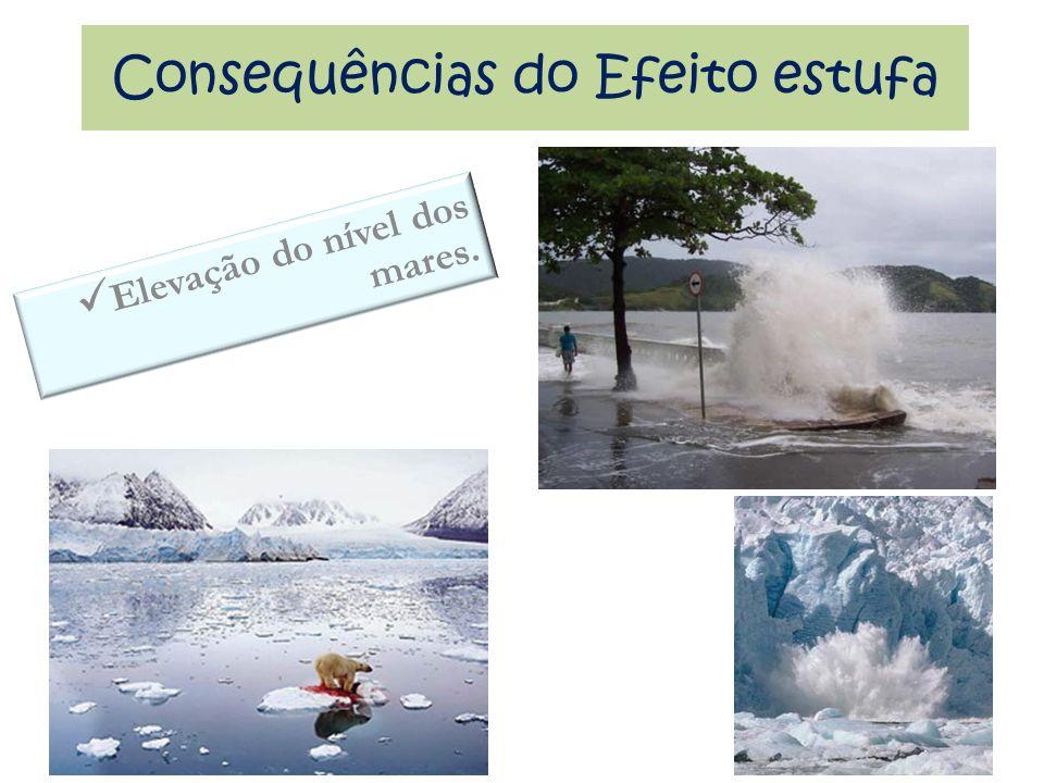 Consequências do Efeito estufa Elevação do nível dos mares.