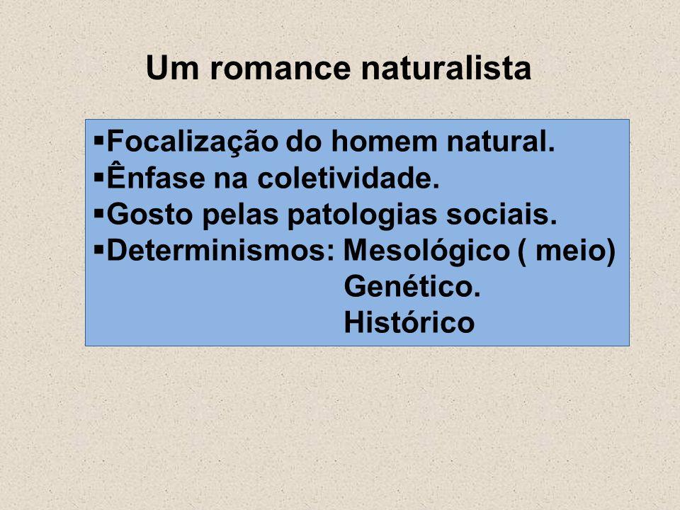 Um romance naturalista Focalização do homem natural. Ênfase na coletividade. Gosto pelas patologias sociais. Determinismos: Mesológico ( meio) Genétic