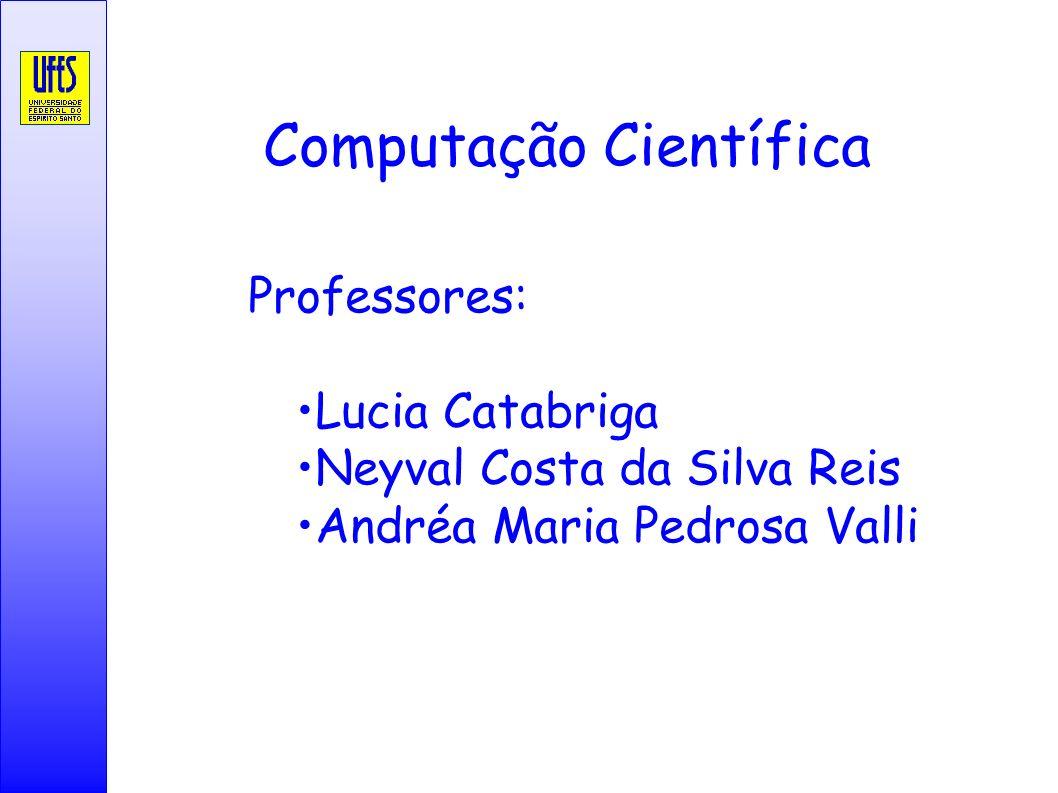 Computação Científica Professores: Lucia Catabriga Neyval Costa da Silva Reis Andréa Maria Pedrosa Valli