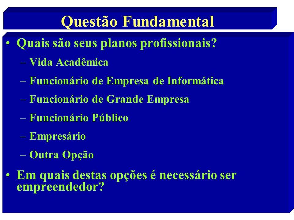 Questão Fundamental Quais são seus planos profissionais? –Vida Acadêmica –Funcionário de Empresa de Informática –Funcionário de Grande Empresa –Funcio