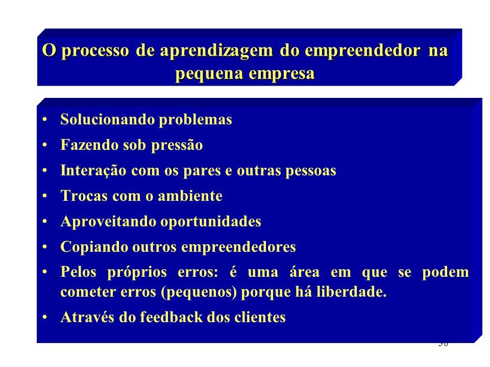 30 O processo de aprendizagem do empreendedor na pequena empresa Solucionando problemas Fazendo sob pressão Interação com os pares e outras pessoas Tr