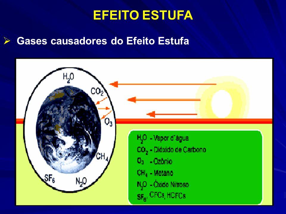 EFEITO ESTUFA Gases causadores do Efeito Estufa