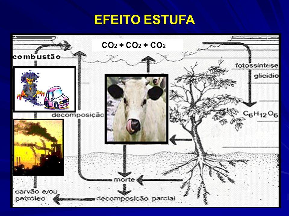 CO 2 + CO 2 + CO 2 EFEITO ESTUFA
