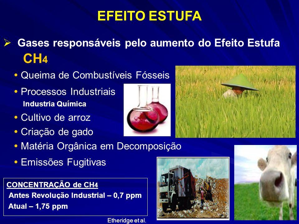 EFEITO ESTUFA Gases responsáveis pelo aumento do Efeito Estufa CH 4 Queima de Combustíveis Fósseis Emissões Fugitivas Processos Industriais Cultivo de
