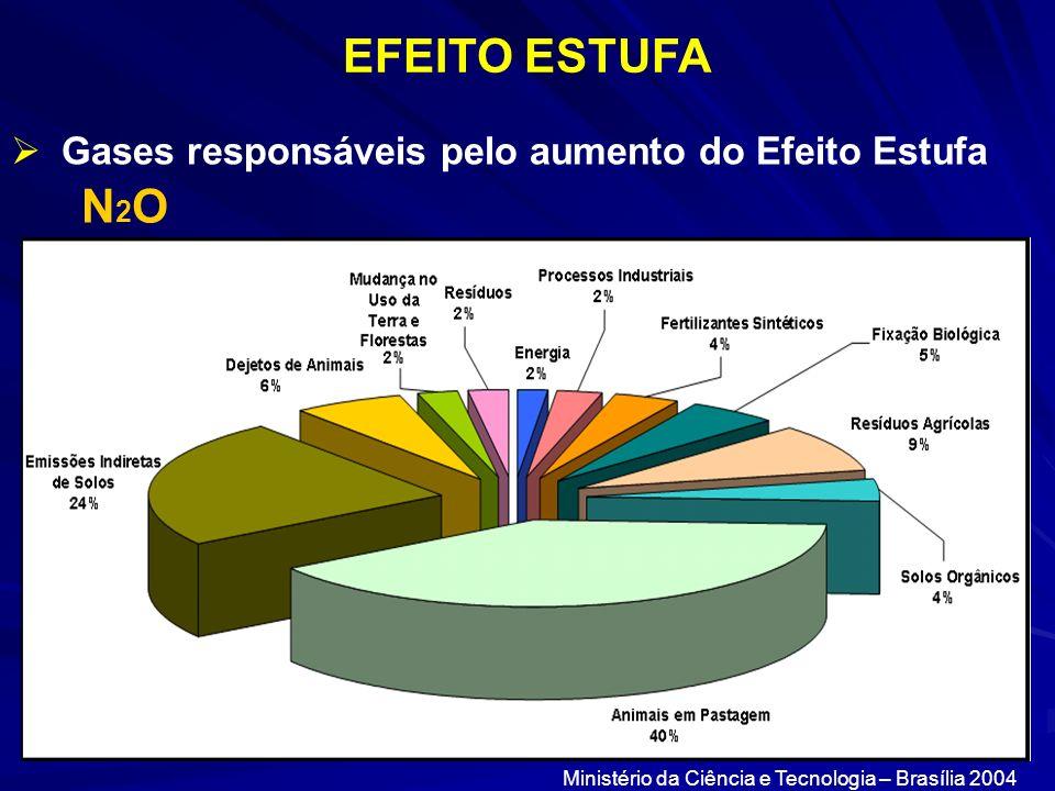 EFEITO ESTUFA Gases responsáveis pelo aumento do Efeito Estufa N2ON2O Ministério da Ciência e Tecnologia – Brasília 2004