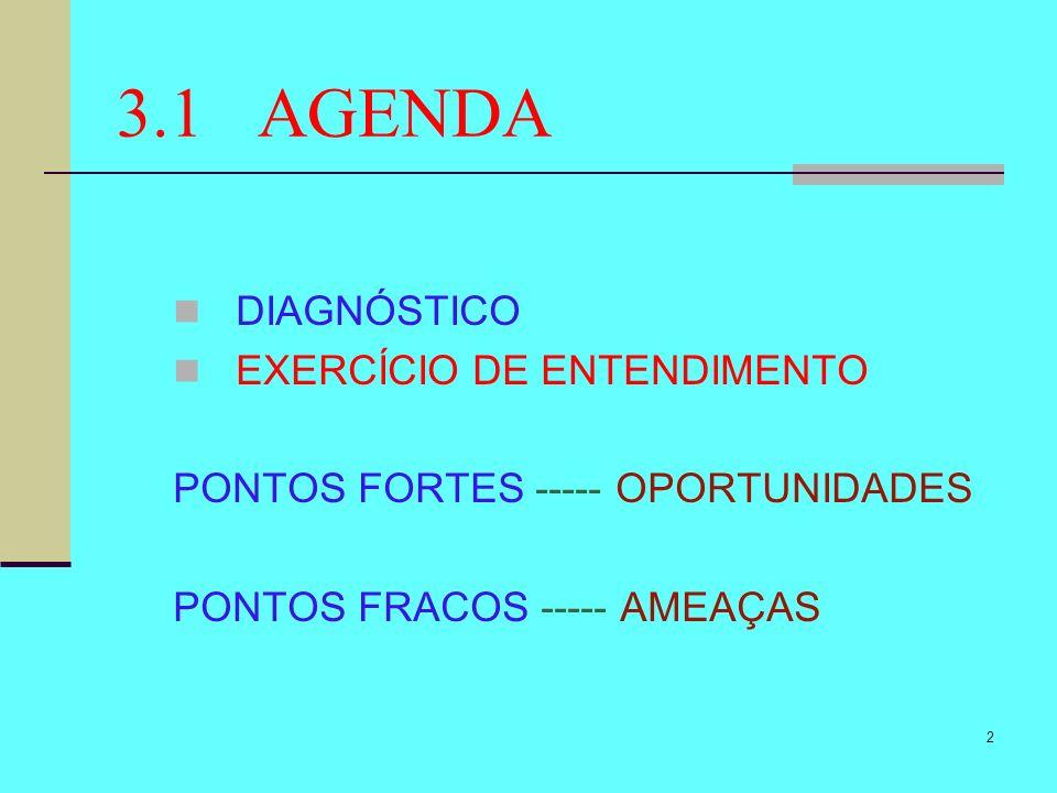 2 3.1 AGENDA DIAGNÓSTICO EXERCÍCIO DE ENTENDIMENTO PONTOS FORTES ----- OPORTUNIDADES PONTOS FRACOS ----- AMEAÇAS
