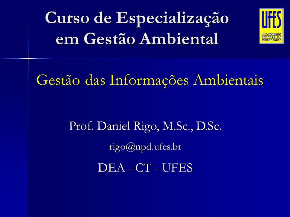 Gestão das Informações Ambientais Prof. Daniel Rigo, M.Sc., D.Sc. rigo@npd.ufes.br DEA - CT - UFES Curso de Especialização em Gestão Ambiental
