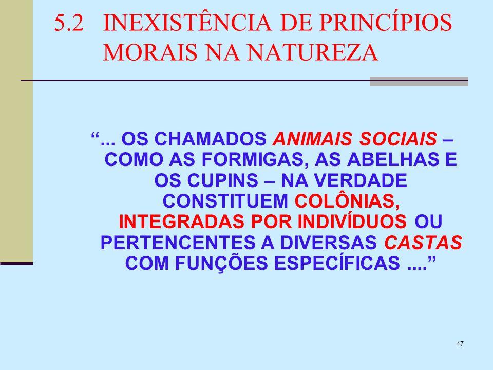 47 5.2INEXISTÊNCIA DE PRINCÍPIOS MORAIS NA NATUREZA... OS CHAMADOS ANIMAIS SOCIAIS – COMO AS FORMIGAS, AS ABELHAS E OS CUPINS – NA VERDADE CONSTITUEM