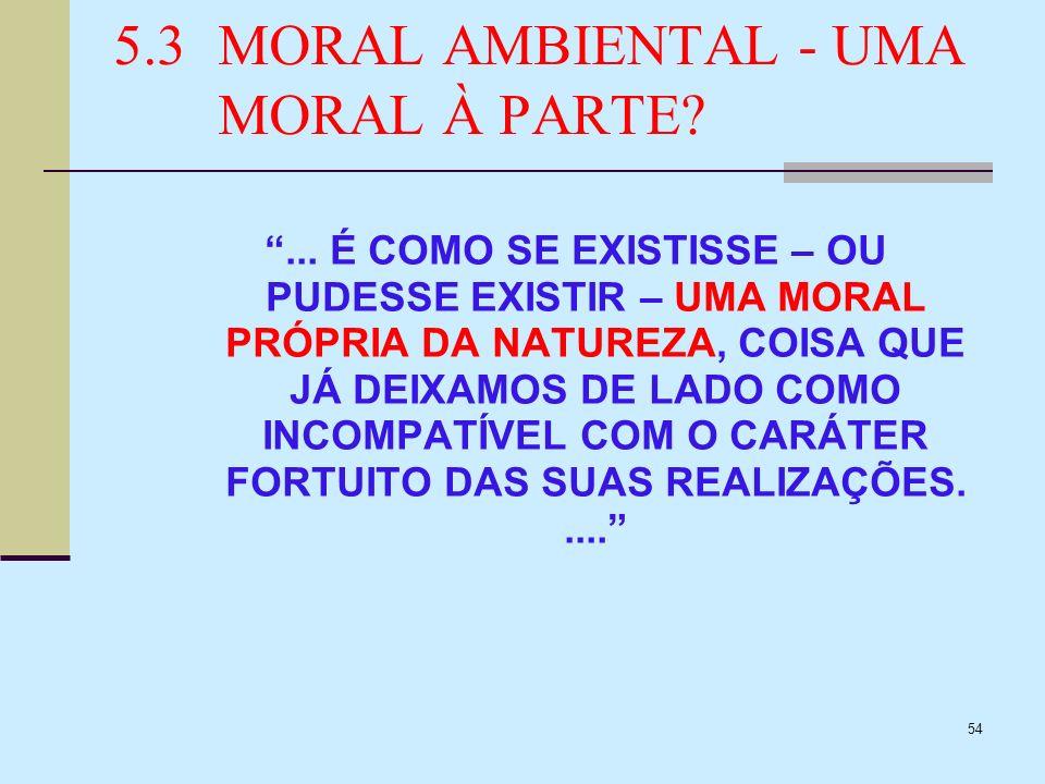 54 5.3MORAL AMBIENTAL - UMA MORAL À PARTE?... É COMO SE EXISTISSE – OU PUDESSE EXISTIR – UMA MORAL PRÓPRIA DA NATUREZA, COISA QUE JÁ DEIXAMOS DE LADO