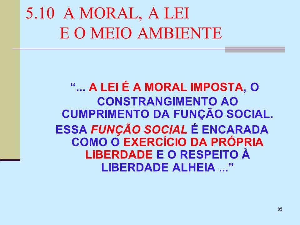85 5.10 A MORAL, A LEI E O MEIO AMBIENTE... A LEI É A MORAL IMPOSTA, O CONSTRANGIMENTO AO CUMPRIMENTO DA FUNÇÃO SOCIAL. ESSA FUNÇÃO SOCIAL É ENCARADA