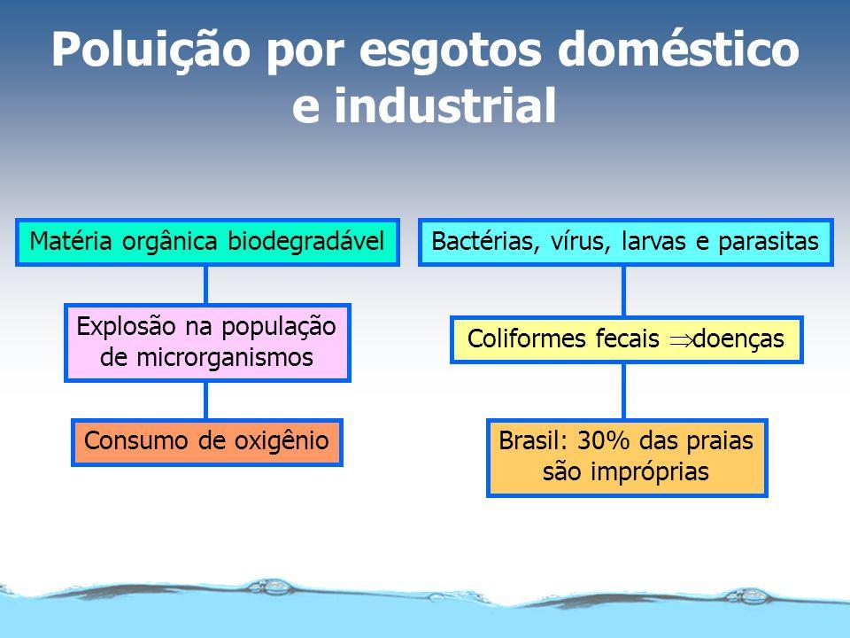 Poluição por fertilizantes agrícolas Usados sem critérioExcesso é levado pela chuva Lençóis subterrâneos, lagos e rios Reprodução acelerada Fitoplânct