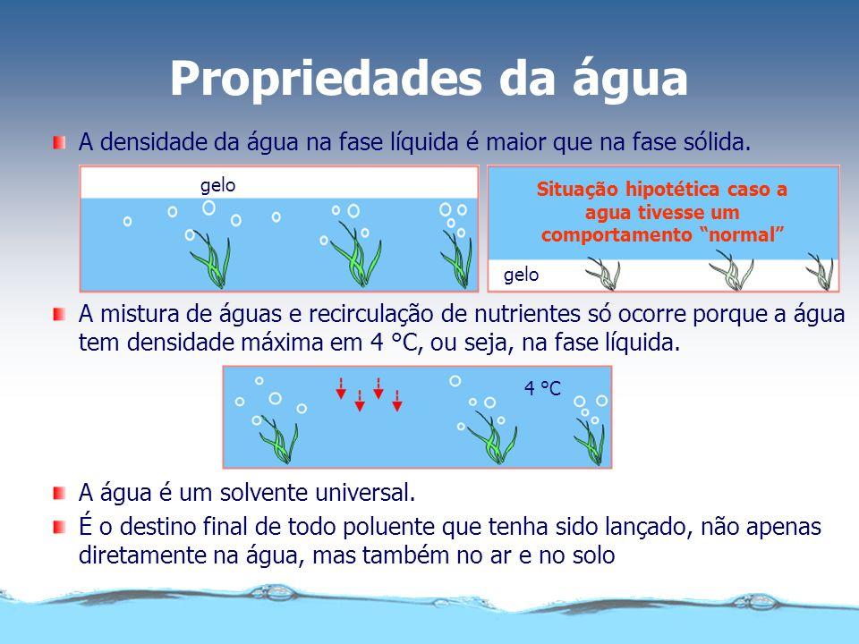Propriedades da água gelo 4 °C A mistura de águas e recirculação de nutrientes só ocorre porque a água tem densidade máxima em 4 °C, ou seja, na fase líquida.