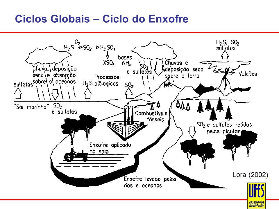 Ciclos Globais – Ciclo do Enxofre Lora (2002)