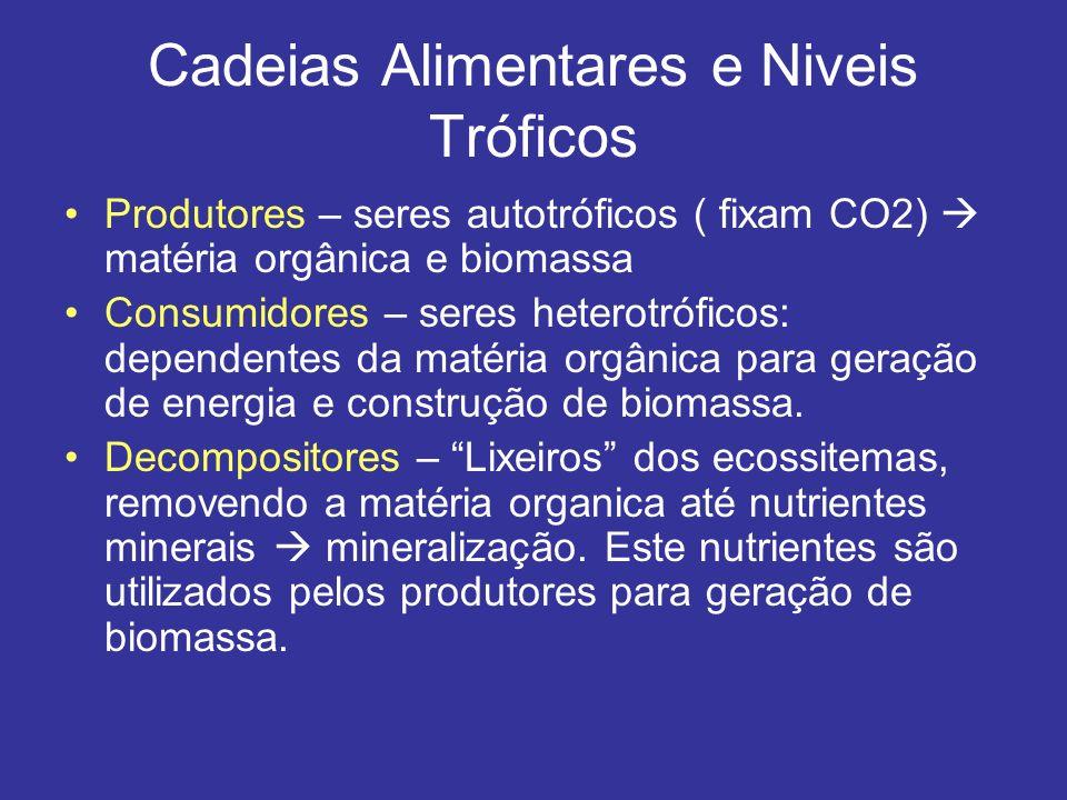 Cadeias Alimentares e Niveis Tróficos Produtores – seres autotróficos ( fixam CO2) matéria orgânica e biomassa Consumidores – seres heterotróficos: de