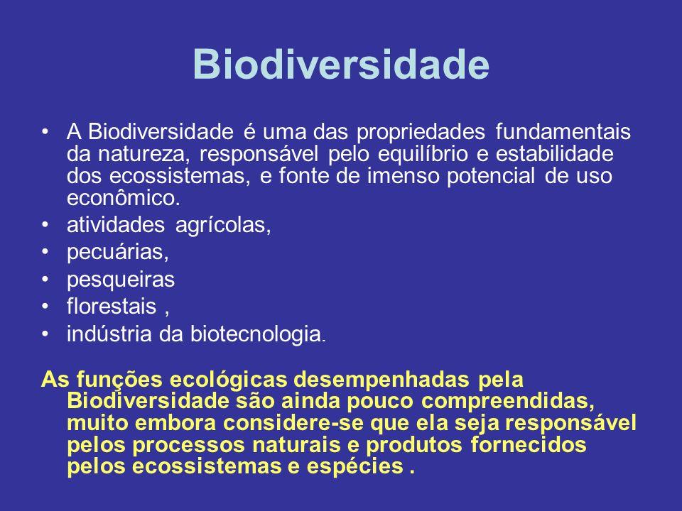 Biodiversidade A Biodiversidade é uma das propriedades fundamentais da natureza, responsável pelo equilíbrio e estabilidade dos ecossistemas, e fonte