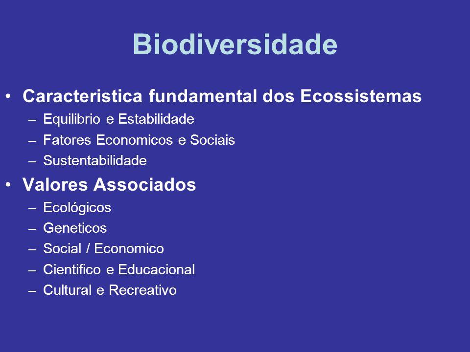 Biodiversidade Caracteristica fundamental dos Ecossistemas –Equilibrio e Estabilidade –Fatores Economicos e Sociais –Sustentabilidade Valores Associad