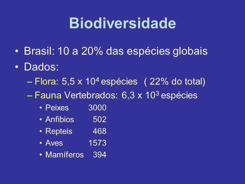 Biodiversidade Brasil: 10 a 20% das espécies globais Dados: –Flora: 5,5 x 10 4 espécies ( 22% do total) –Fauna Vertebrados: 6,3 x 10 3 espécies Peixes