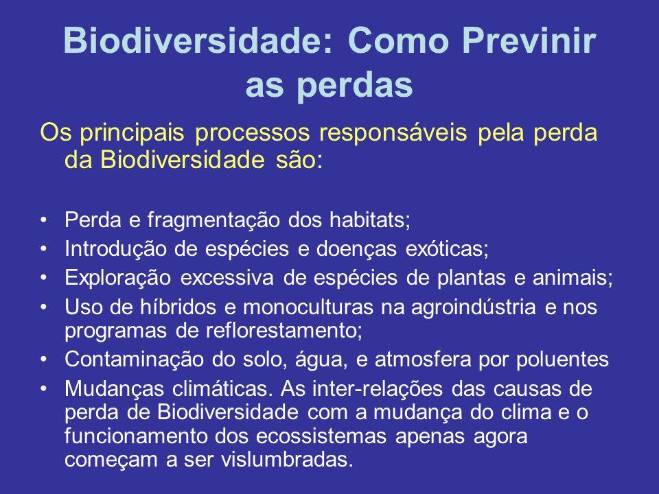 Biodiversidade: Como Previnir as perdas Os principais processos responsáveis pela perda da Biodiversidade são: Perda e fragmentação dos habitats; Intr