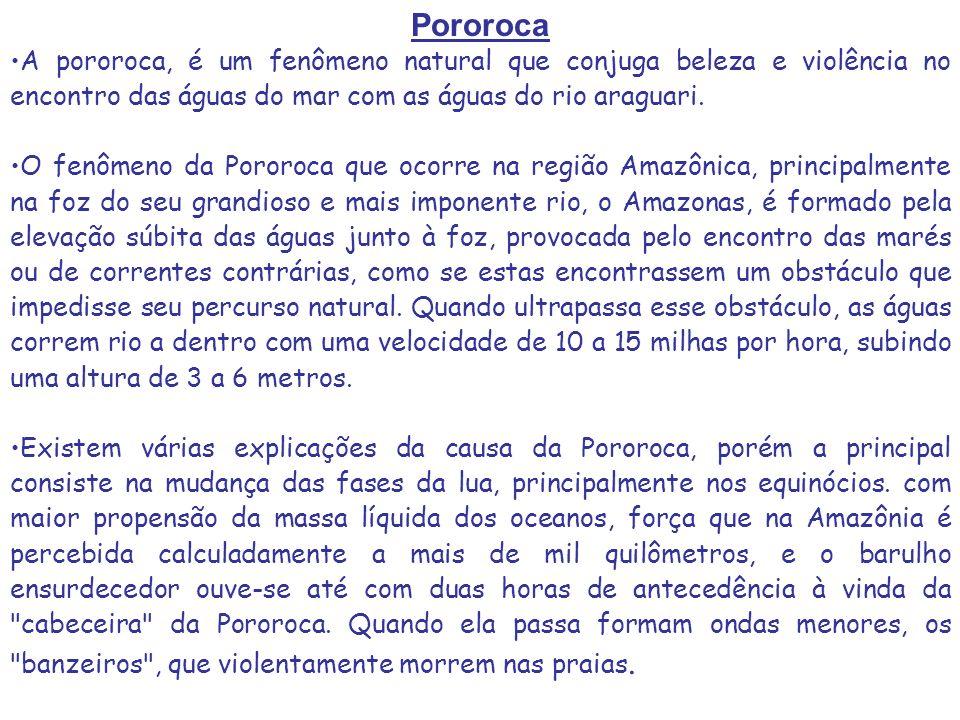 Pororoca A pororoca, é um fenômeno natural que conjuga beleza e violência no encontro das águas do mar com as águas do rio araguari. O fenômeno da Por