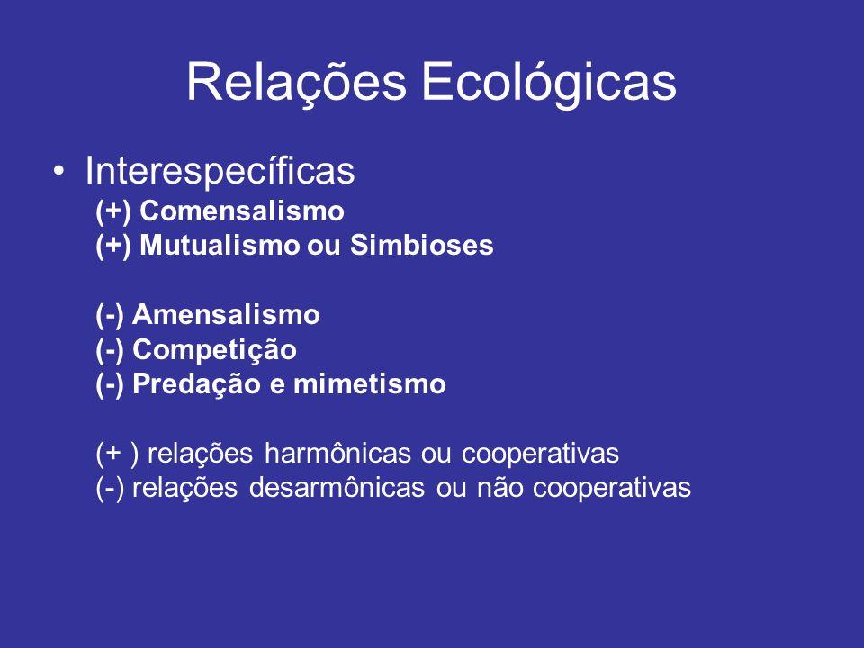 Relações Ecológicas Interespecíficas (+) Comensalismo (+) Mutualismo ou Simbioses (-) Amensalismo (-) Competição (-) Predação e mimetismo (+ ) relaçõe