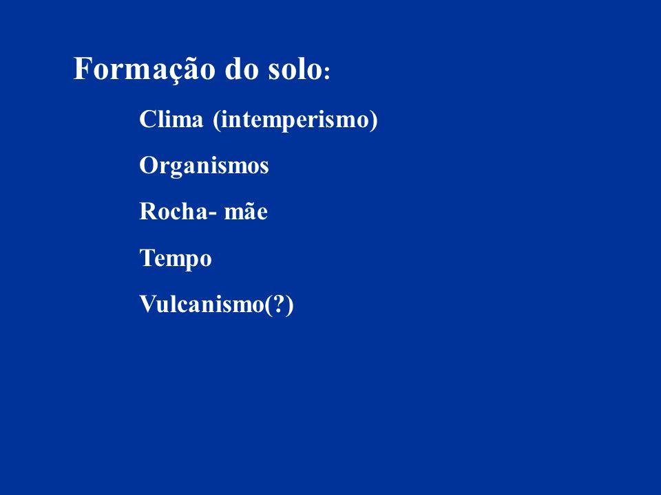 Formação do solo : Clima (intemperismo) Organismos Rocha- mãe Tempo Vulcanismo(?)