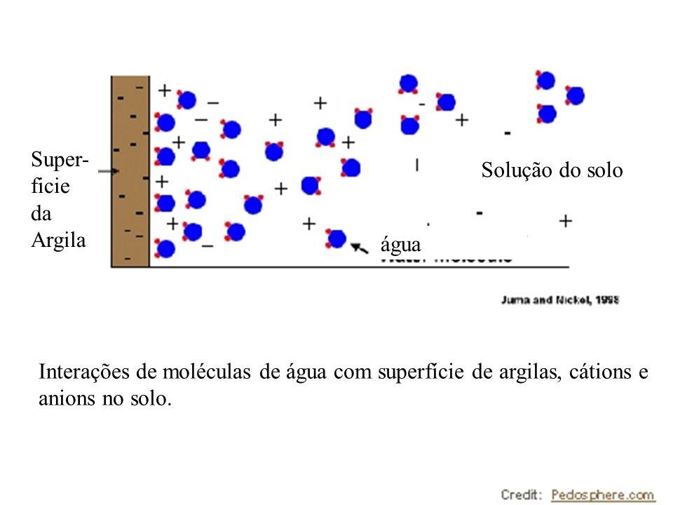 Interações de moléculas de água com superfície de argilas, cátions e anions no solo. Super- ficie da Argila Solução do solo água