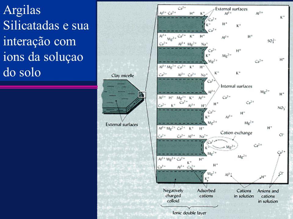 Argilas Silicatadas e sua interação com ions da soluçao do solo