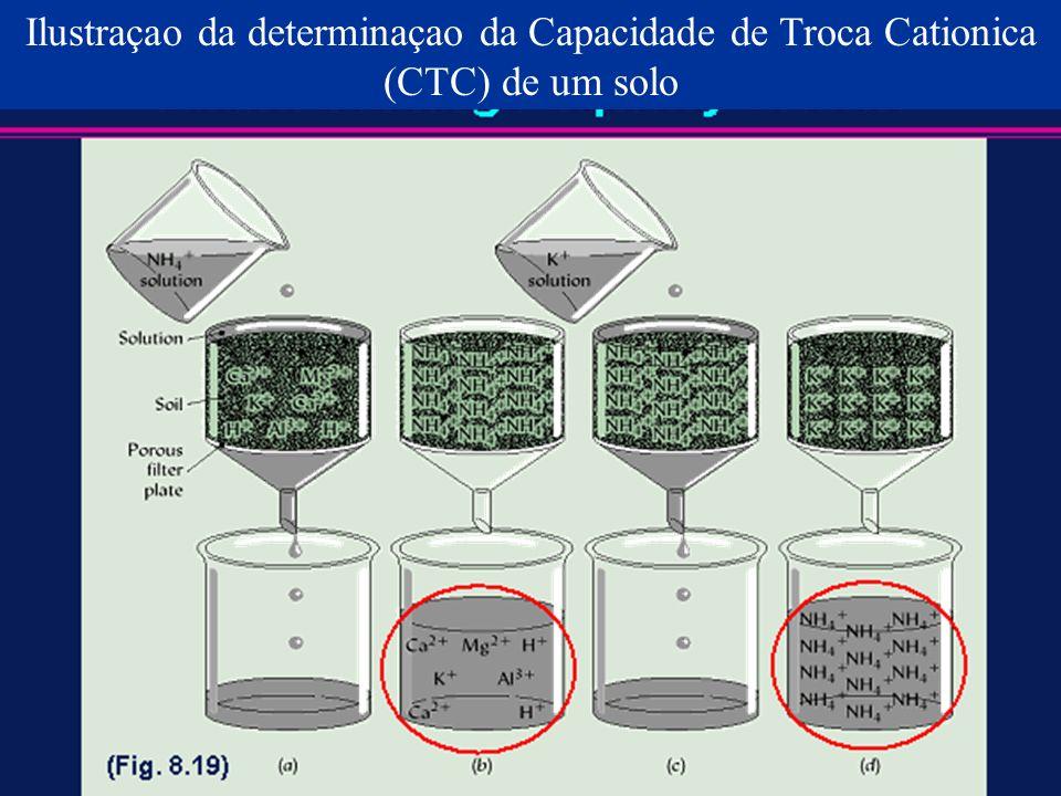Ilustraçao da determinaçao da Capacidade de Troca Cationica (CTC) de um solo