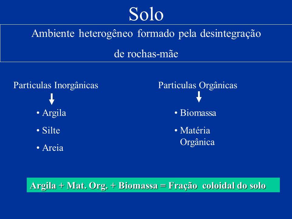 Argila + Mat. Org. + Biomassa = Fração coloidal do solo Solo Ambiente heterogêneo formado pela desintegração de rochas-mãe Particulas Inorgânicas Argi
