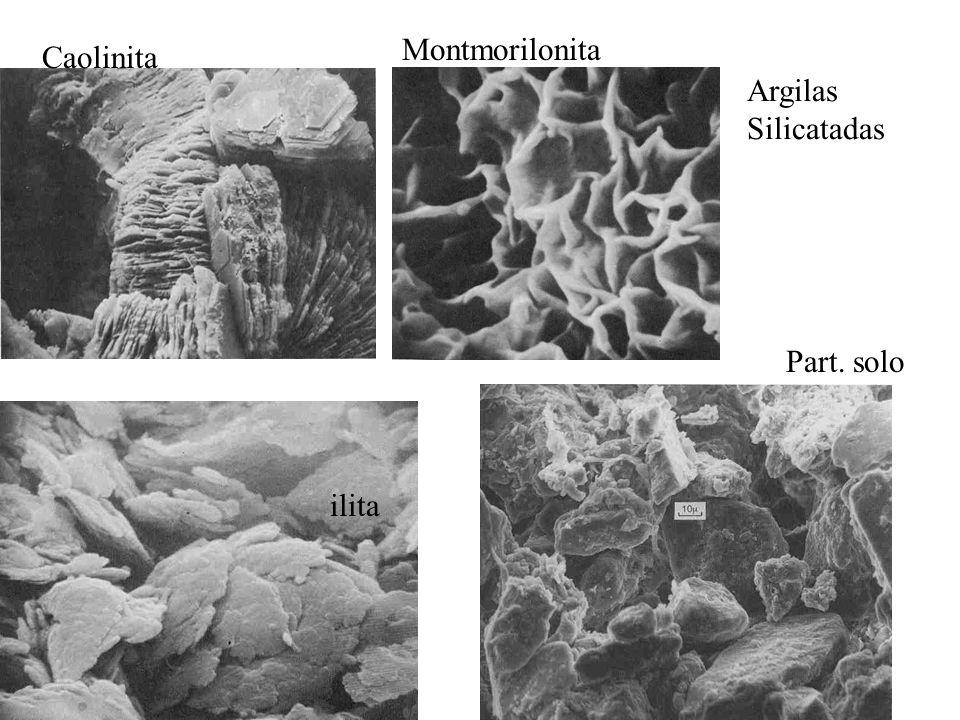 Caolinita Montmorilonita ilita Part. solo Argilas Silicatadas