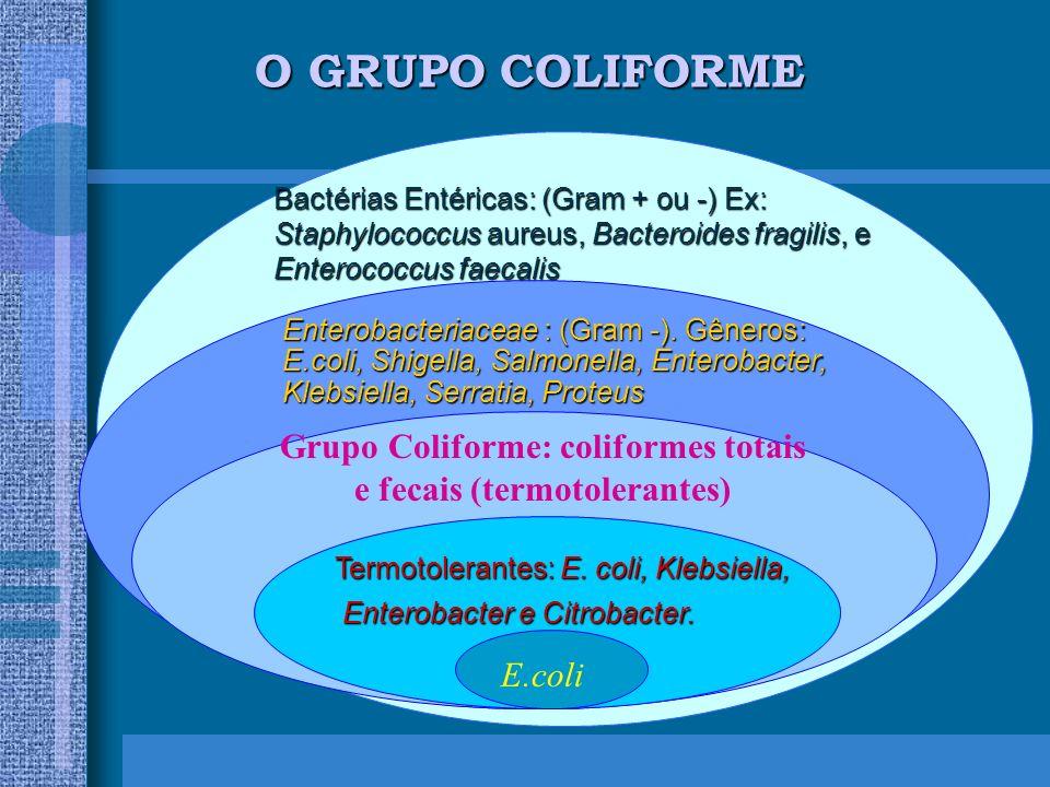 O GRUPO COLIFORME Bactérias Entéricas: (Gram + ou -) Ex: Staphylococcus aureus, Bacteroides fragilis, e Enterococcus faecalis Enterobacteriaceae : (Gram -).