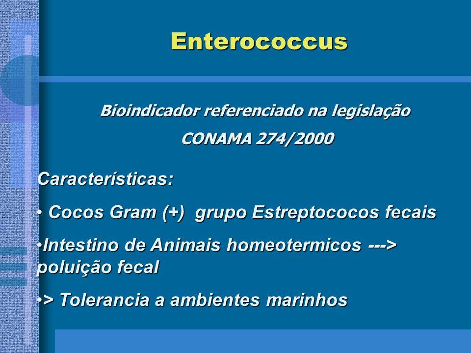 Enterococcus Bioindicador referenciado na legislação CONAMA 274/2000 Características: Cocos Gram (+) grupo Estreptococos fecais Cocos Gram (+) grupo Estreptococos fecais Intestino de Animais homeotermicos ---> poluição fecalIntestino de Animais homeotermicos ---> poluição fecal > Tolerancia a ambientes marinhos> Tolerancia a ambientes marinhos