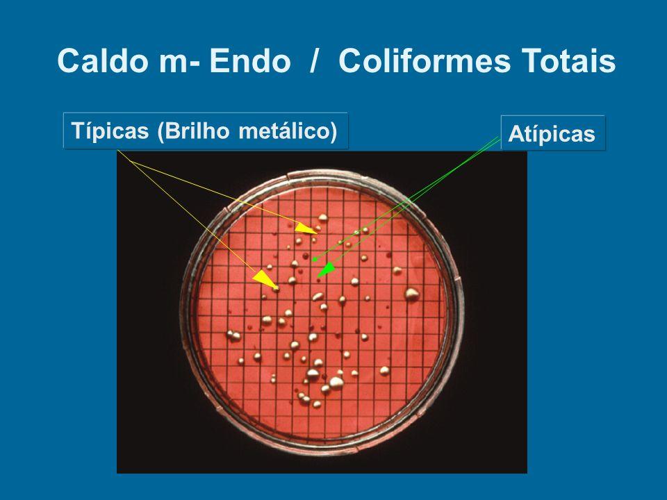 Atípicas Caldo m- Endo / Coliformes Totais Típicas (Brilho metálico)