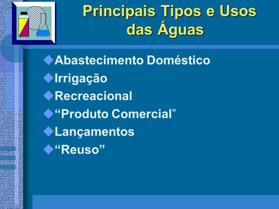 DOENÇAS DE VEICULAÇÃO HÍDRICA Fonte: Efstratiou (2001) Pseudomonas