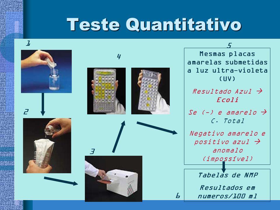 Teste Quantitativo 1 2 3 4 Mesmas placas amarelas submetidas a luz ultra-violeta (UV) Resultado Azul Ecoli Se (-) e amarelo C.