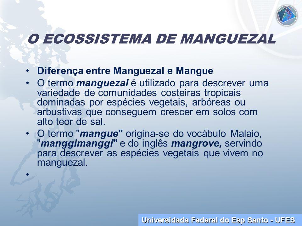 Universidade Federal do Esp Santo - UFES O ECOSSISTEMA DE MANGUEZAL Diferença entre Manguezal e Mangue O termo manguezal é utilizado para descrever um
