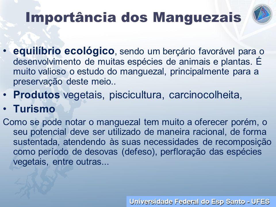 Universidade Federal do Esp Santo - UFES Importância dos Manguezais equilíbrio ecológico, sendo um berçário favorável para o desenvolvimento de muitas