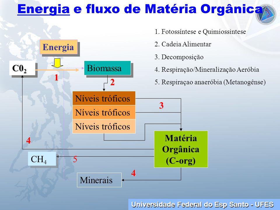 Universidade Federal do Esp Santo - UFES Energia e fluxo de Matéria Orgânica C0 2 Biomassa Níveis tróficos Matéria Orgânica (C-org) Minerais Energia 1