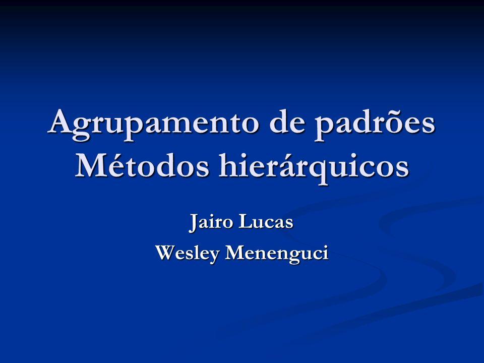 Agrupamento de padrões Introdução Introdução Motivação Motivação Mineração de Dados Mineração de Dados Métodos hierarquicos Métodos hierarquicos Hierárquico Divisivo Hierárquico Divisivo Hierárquico Aglomerativo Hierárquico Aglomerativo Bibliografia Bibliografia