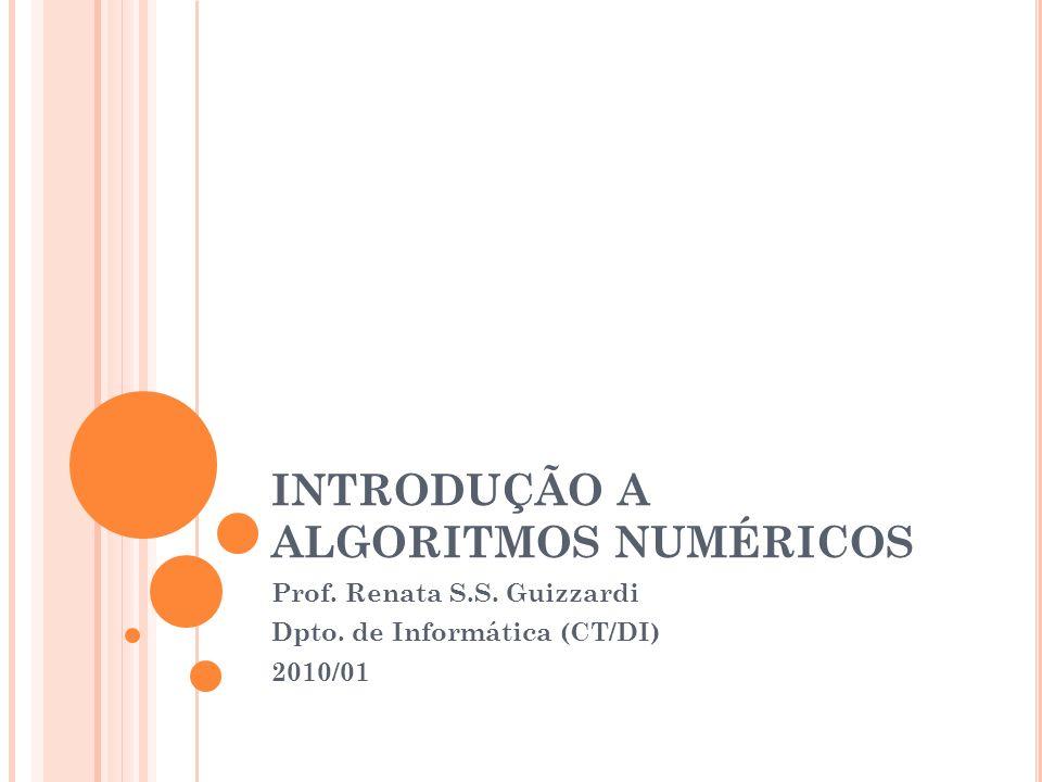 INTRODUÇÃO A ALGORITMOS NUMÉRICOS Prof. Renata S.S. Guizzardi Dpto. de Informática (CT/DI) 2010/01